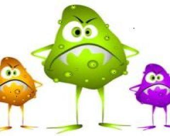 Evinizdeki mikroplar!